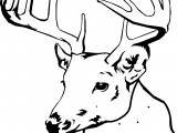 Spotted Deer Coloring Pages