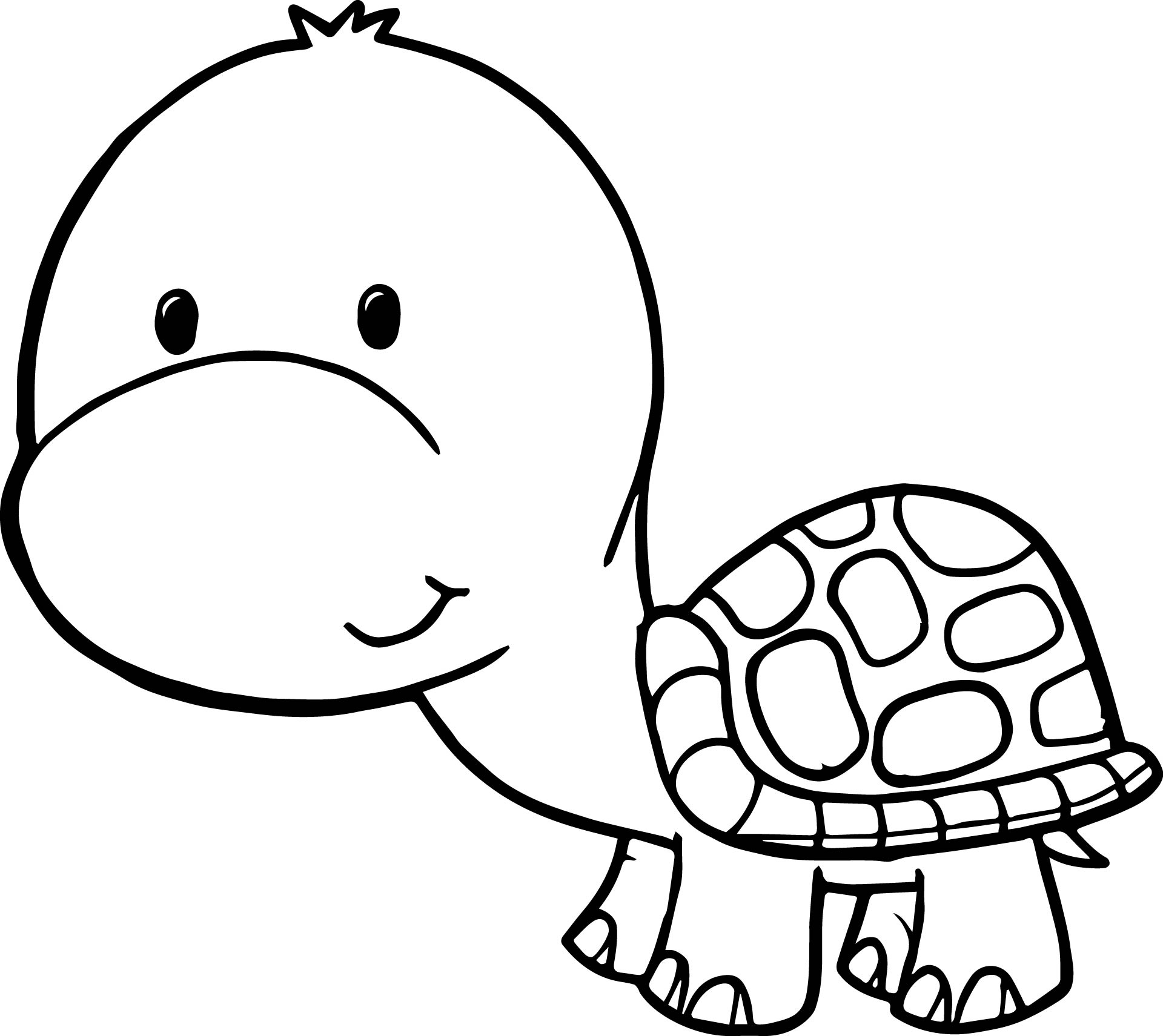 Cute free tortoise turtle coloring page for Turtle coloring pages