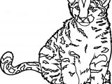 Realistic Zoo Wild Cat Coloring Page