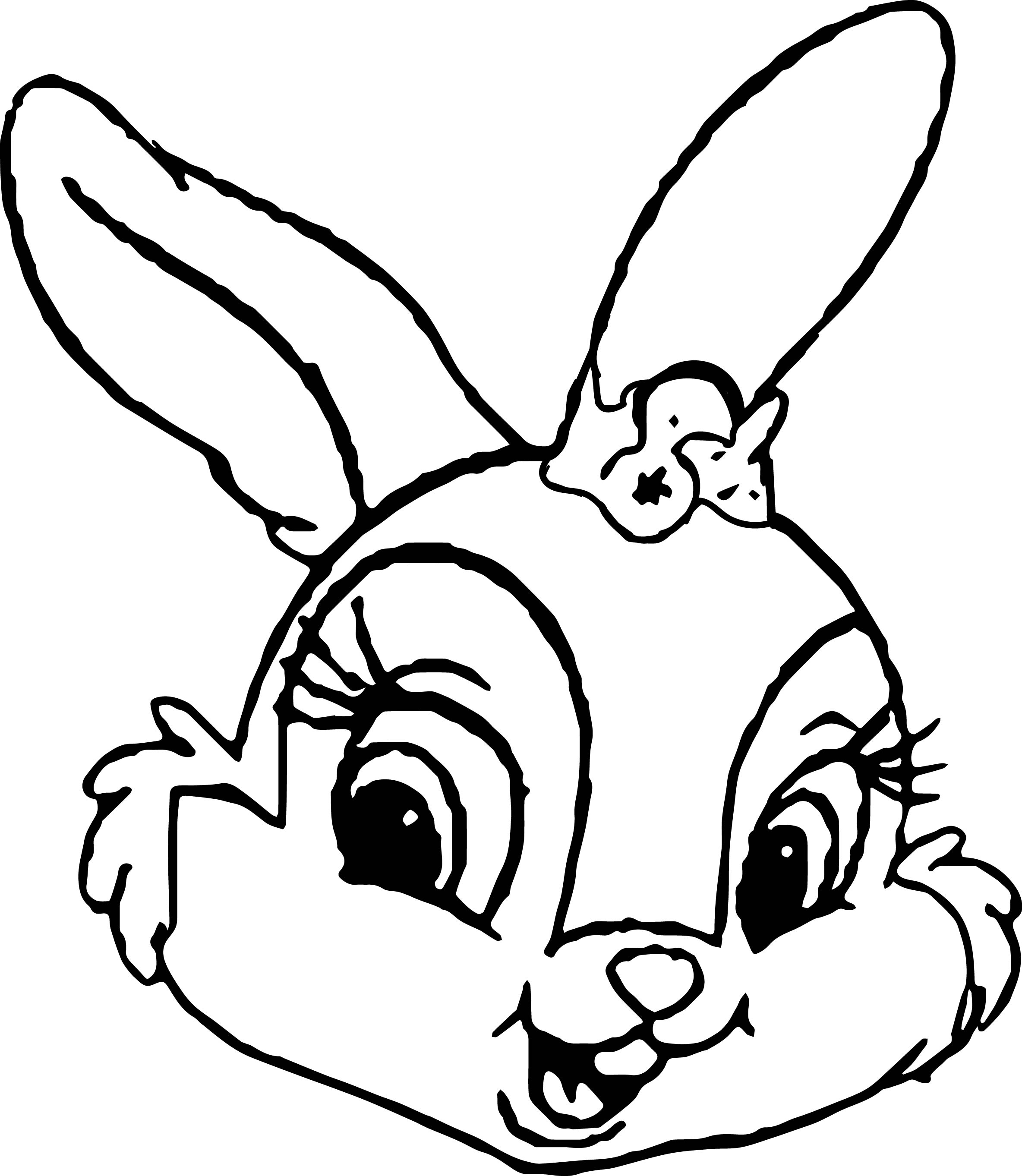 Bunny Face Line Drawing : Thumpers sisters and miss bunny face coloring pages