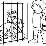 Zoo Monkey Coloring Page