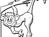 Affe Bild Zoo Coloring Page