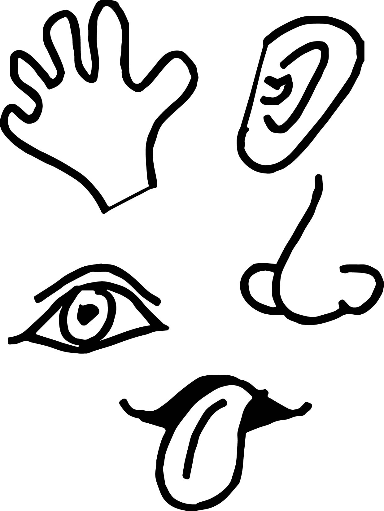 5 senses picture coloring page wecoloringpage for Five senses coloring pages