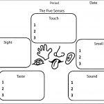 Five Senses Graphic Organizer Coloring Page