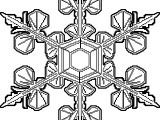 Snowflake Lace Coloring Page