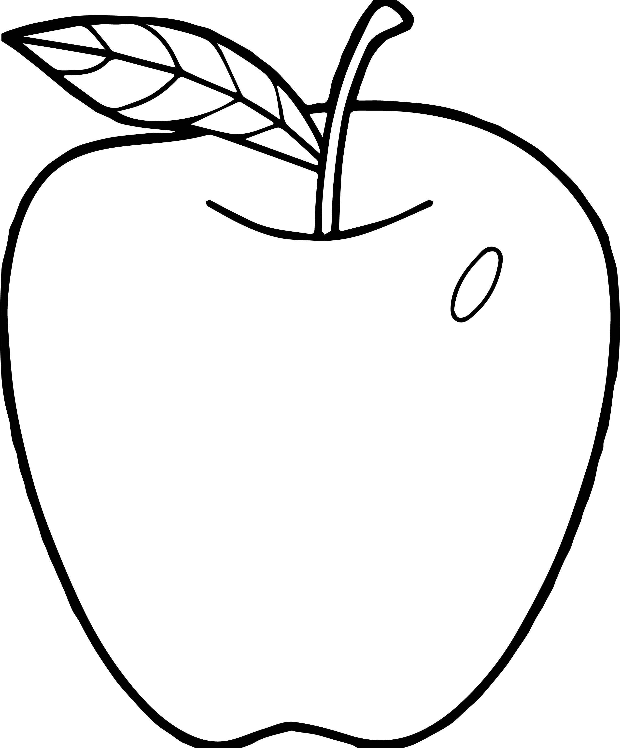 Parts Of An Apple Coloring Pages Nomenclature Cards_apple Parts Coloring Page on Freebie Parts Of Apple