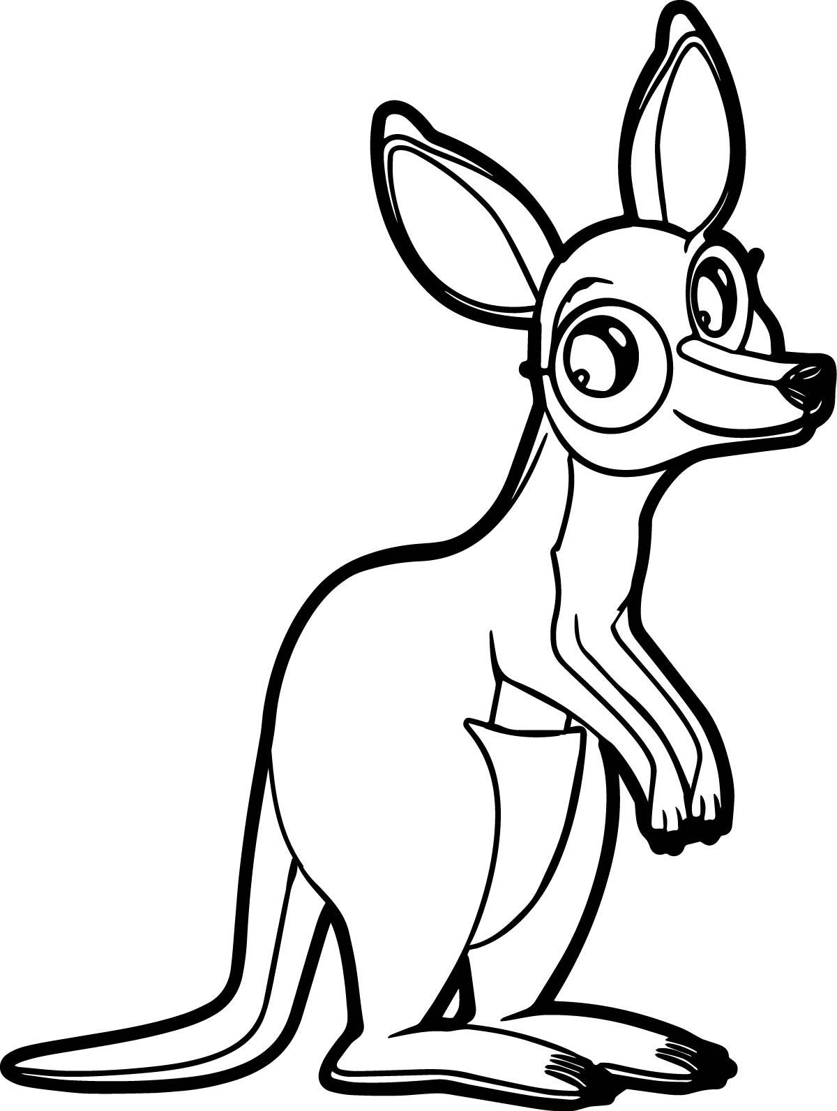 marsupial kangaroo coloring page