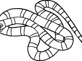 Rainforest Coral Snake Coloring Page