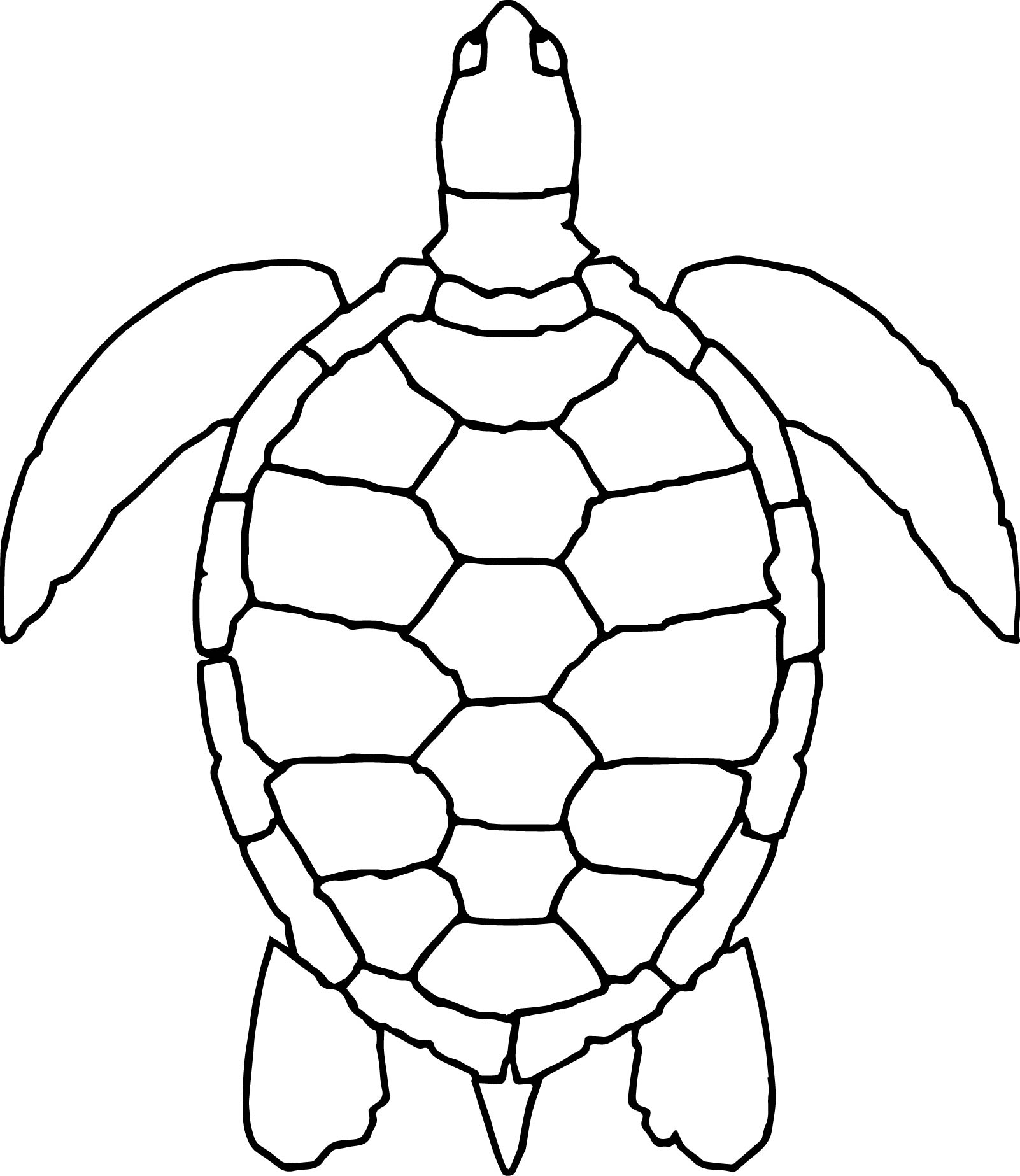 Underwater Animals Coloring Page Wecoloringpage Coloring