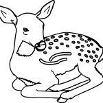 Staying Antelope Animal Coloring Page