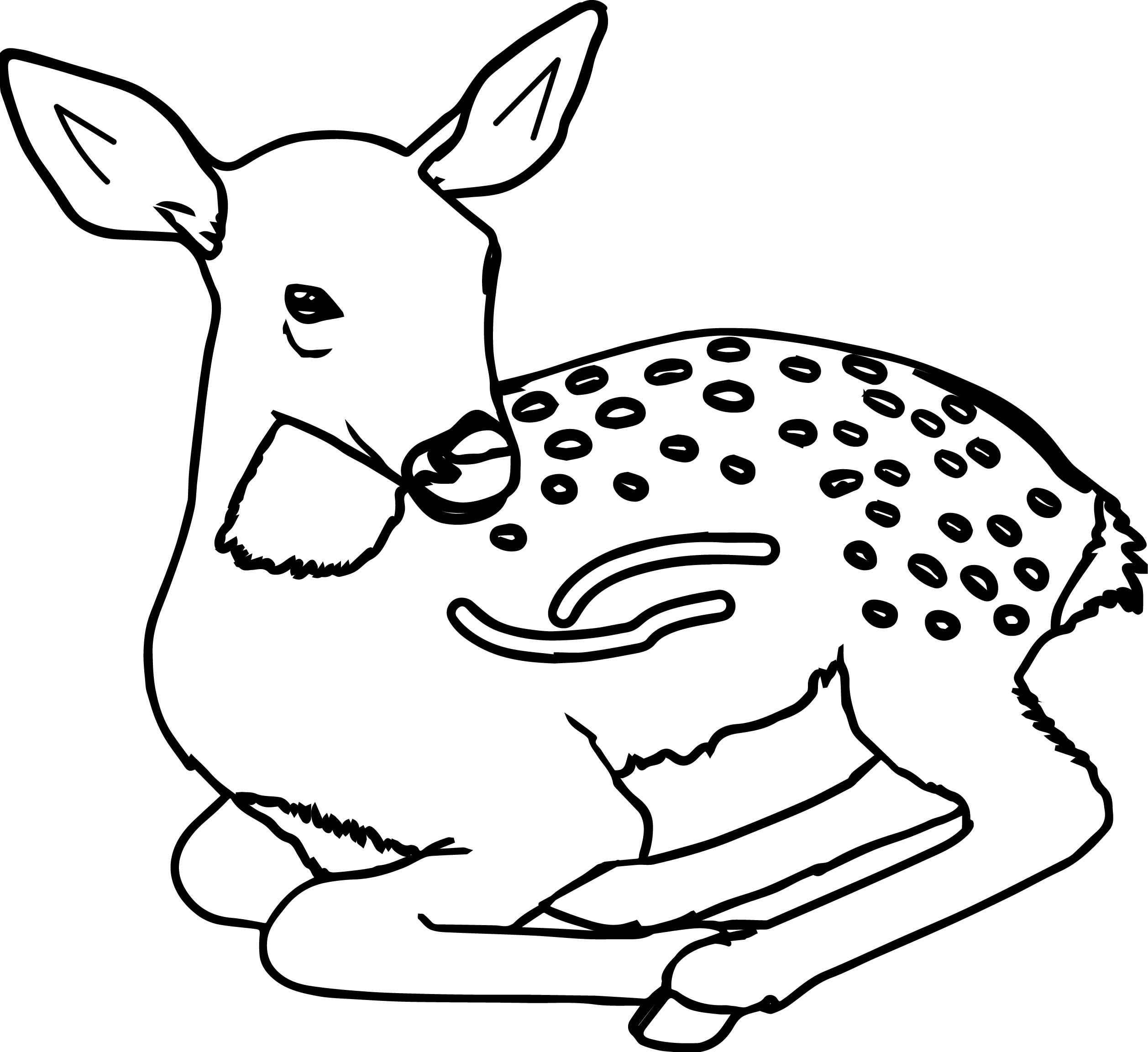 Staying Antelope Animal Coloring Page