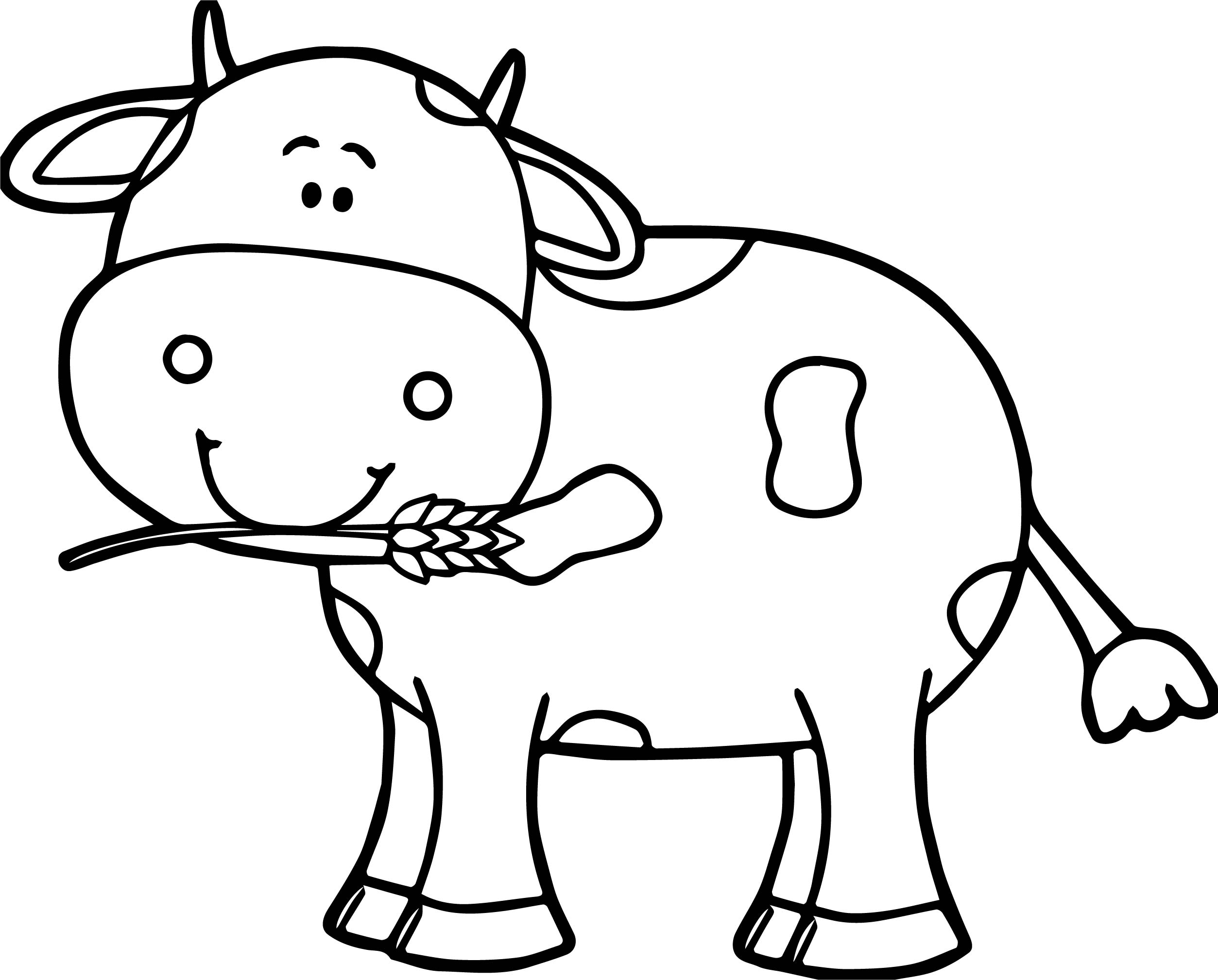 baby calf coloring pages - cute cow coloring page