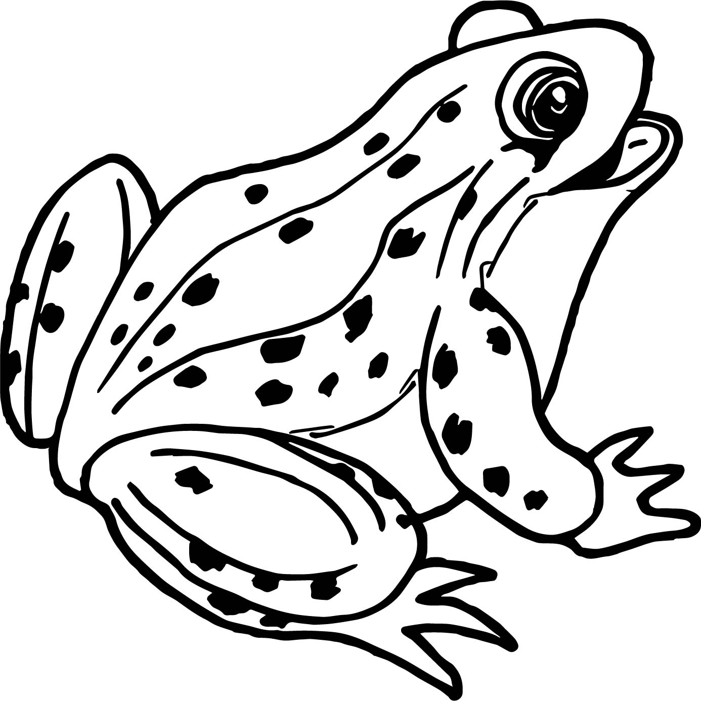 realistic frog coloring page wecoloringpage