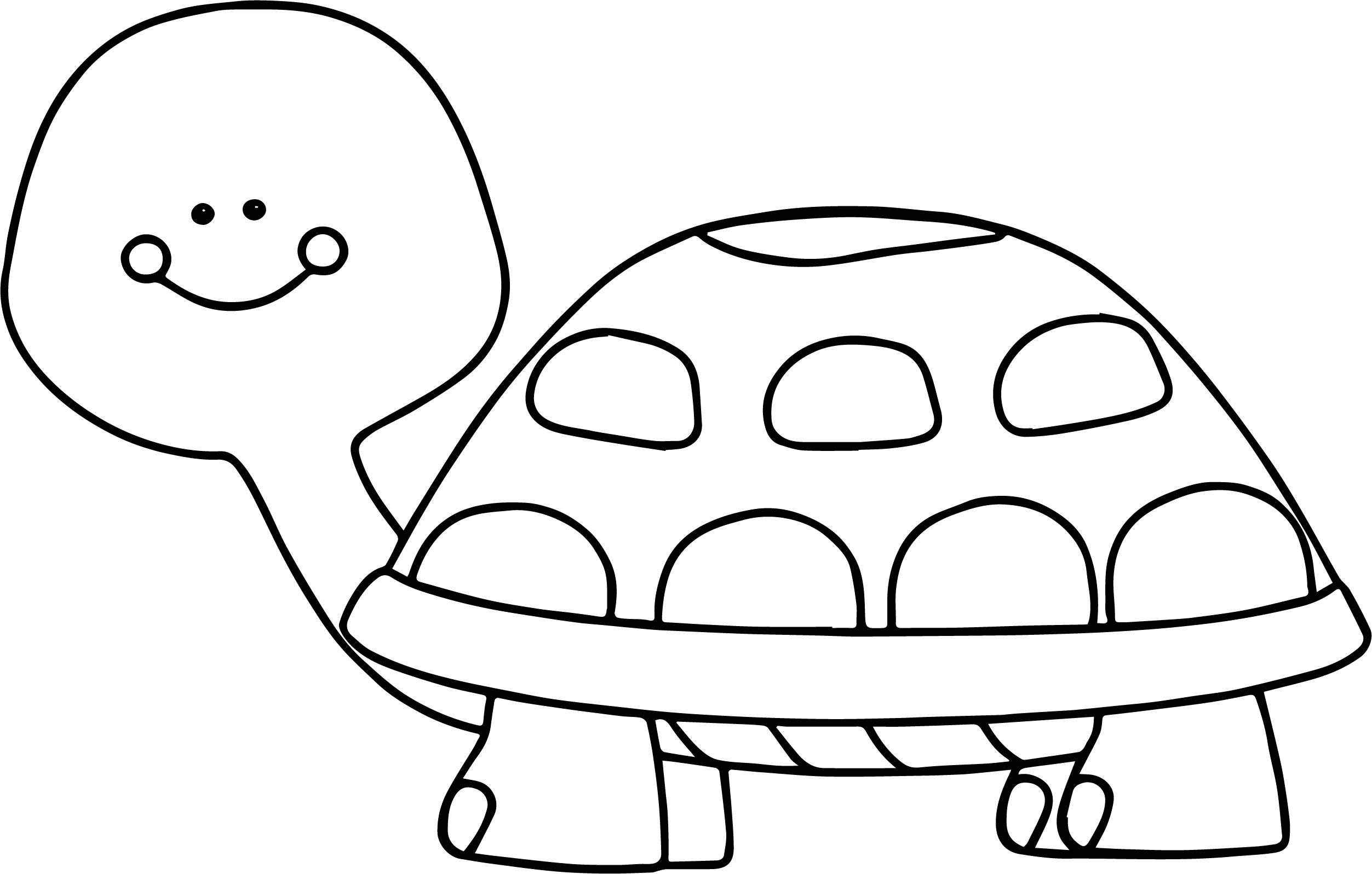 Very funny tortoise turtle coloring page for Turtle coloring pages