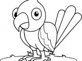 Waiting Parrot Coloring Page