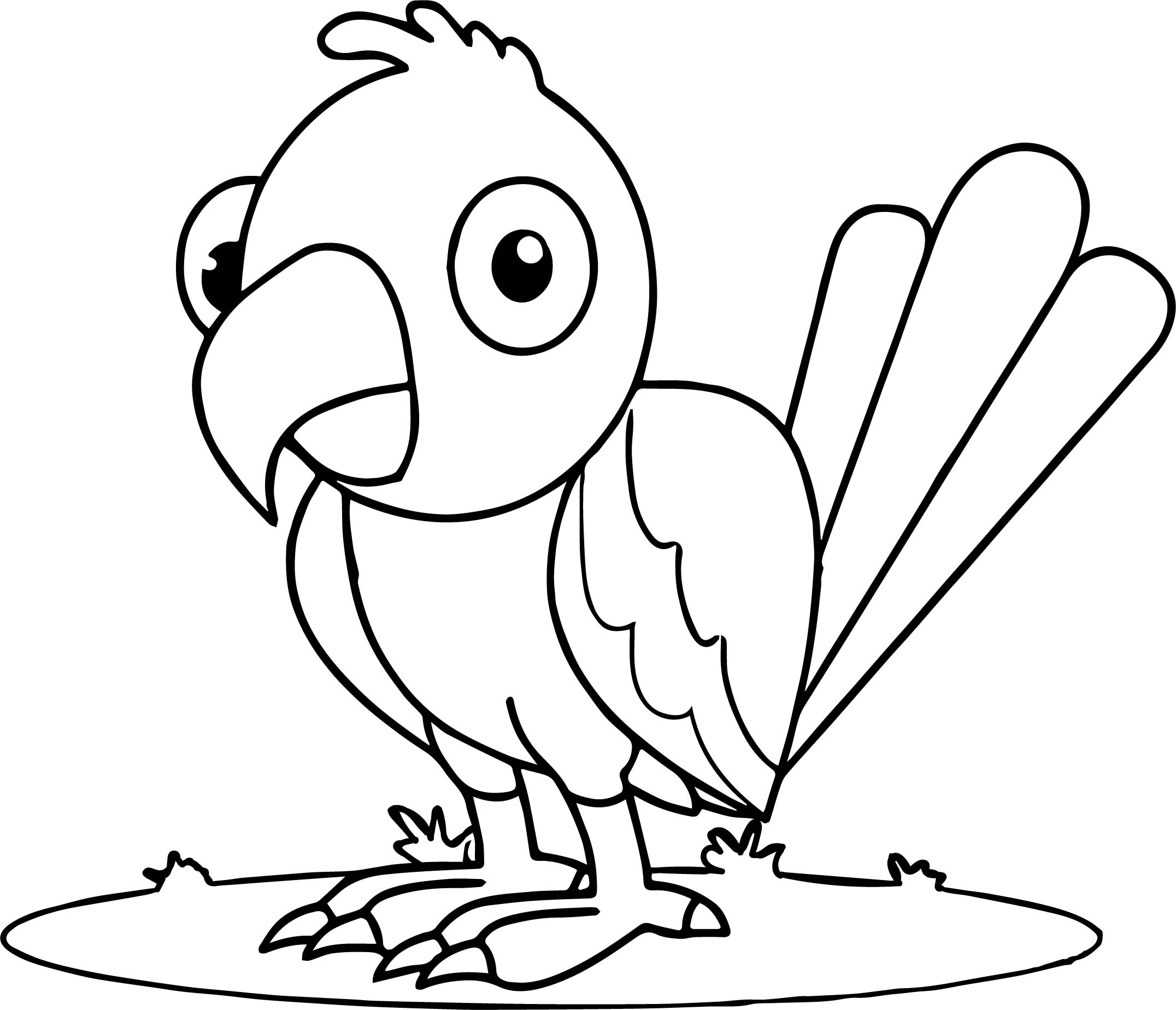Waiting parrot coloring page for Coloring pages parrot