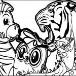 Abc Animal Zebra Lion Coloring Page
