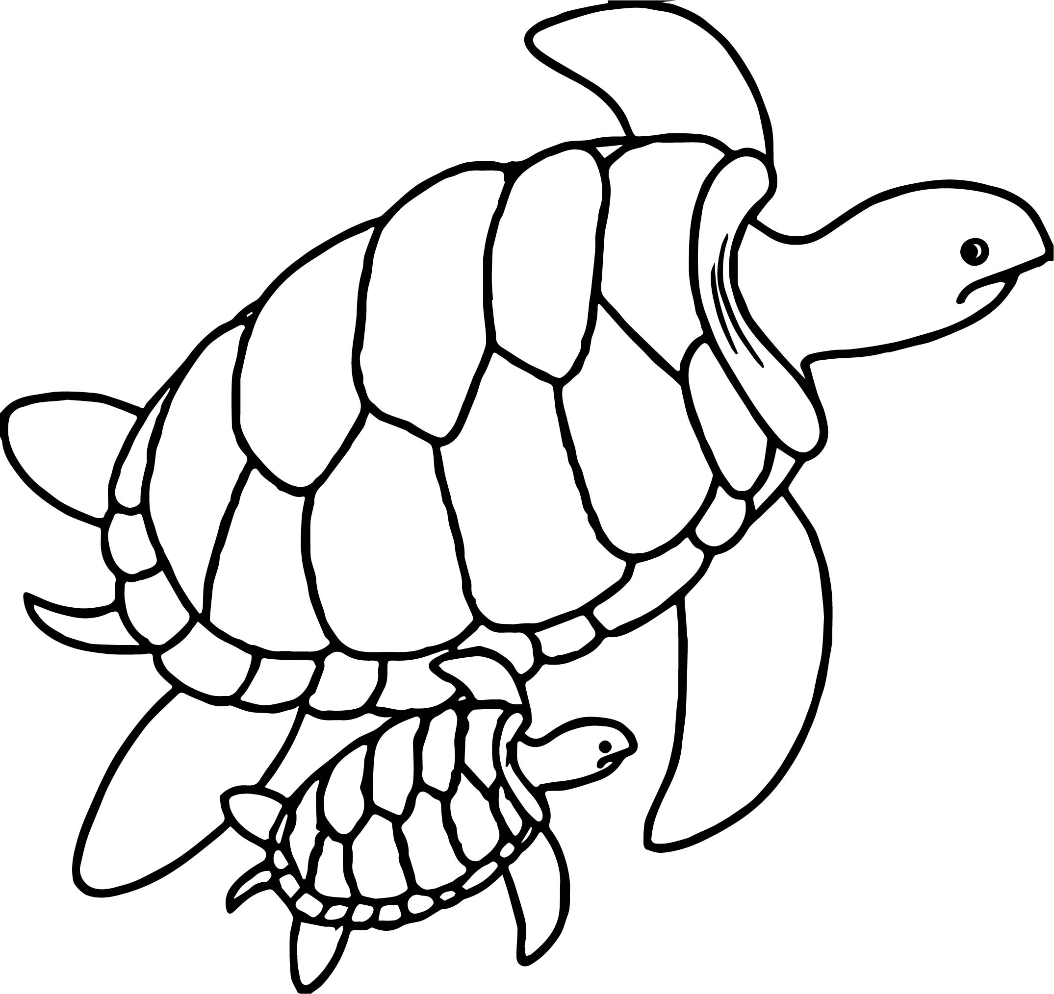Cute Sea Turtle Mother And Baby Turtles Swimming Together Underwater Coloring Page