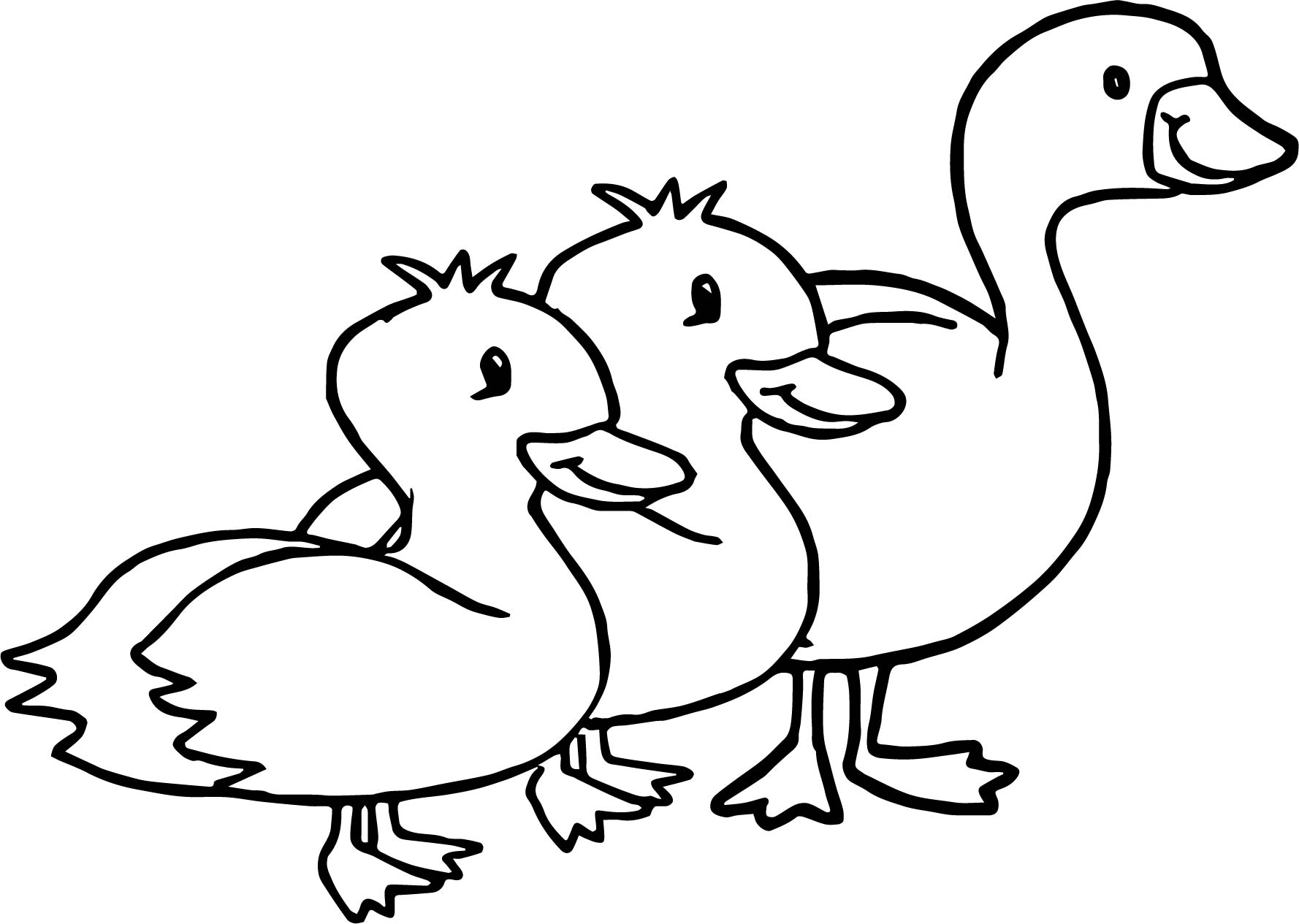 Duck Goose Animal Coloring Page
