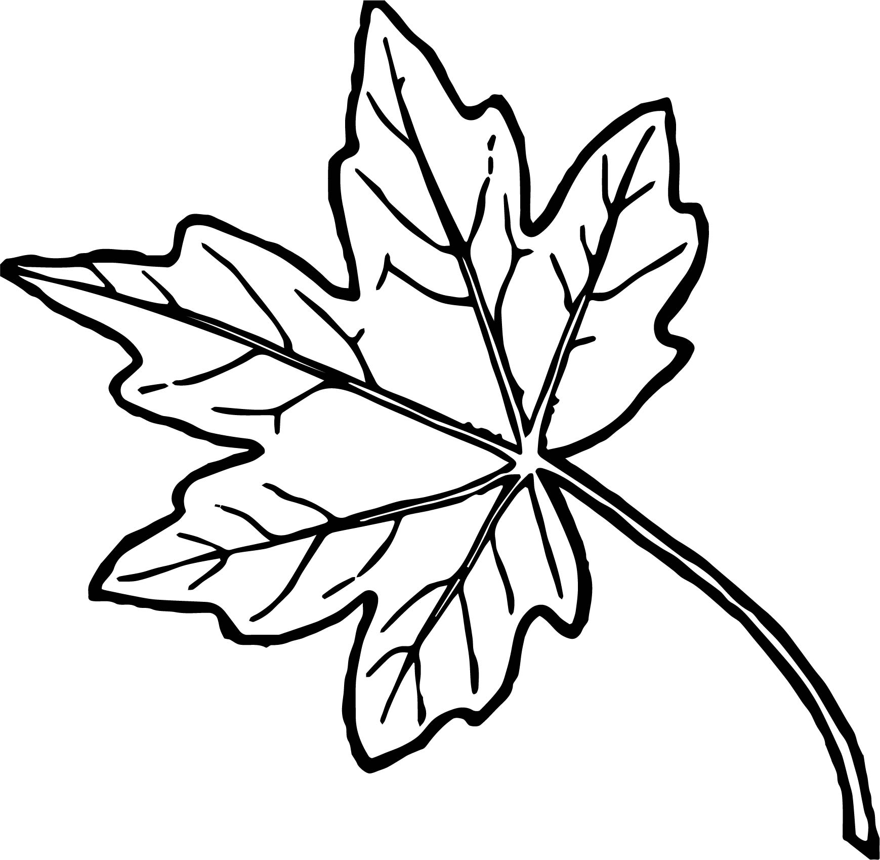 Just autumn leaf coloring page for Leave coloring pages