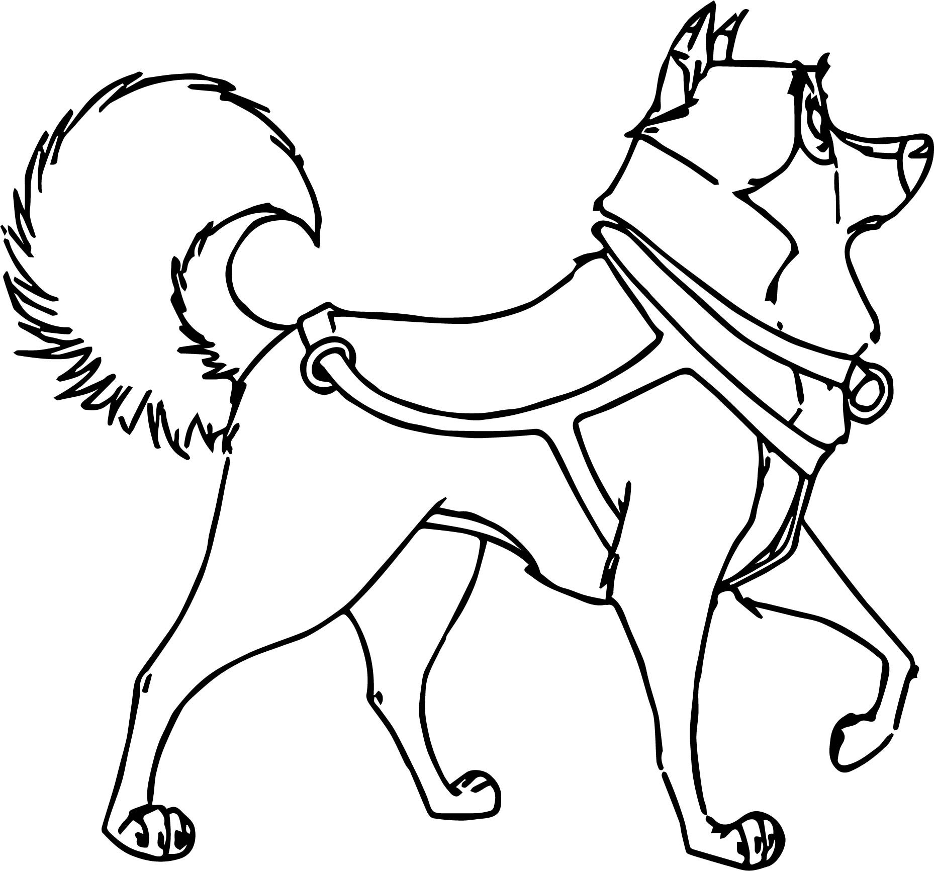 Kaltag Balto Character Spin Around Wolf Coloring Page