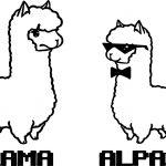 Llama And Alpaca Coloring Page