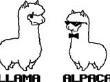 Llama And Alpaca Coloring Page