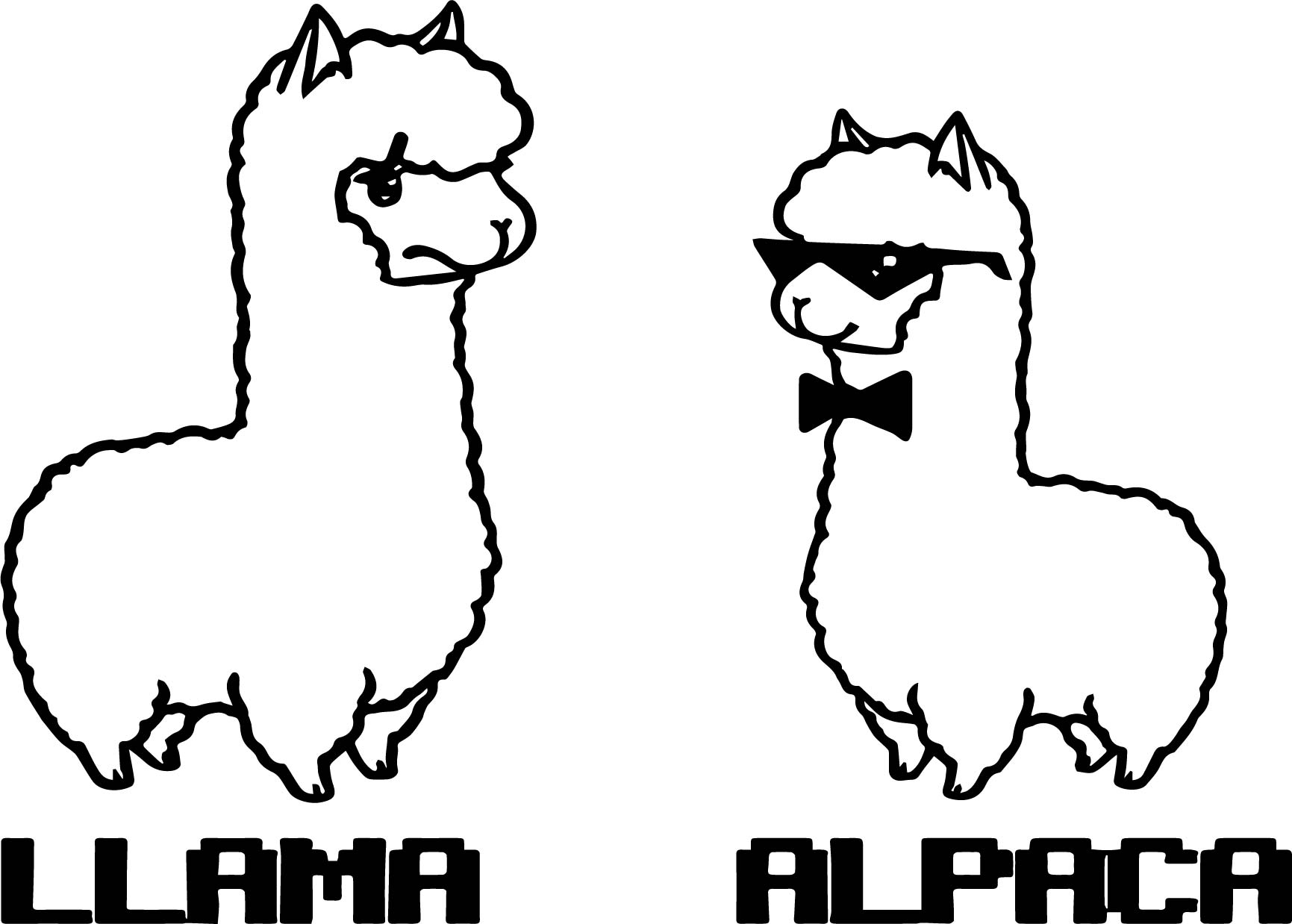 Llama Coloring Pages Printable Sketch