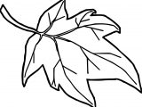 Orange Autumn Leaf Coloring Page