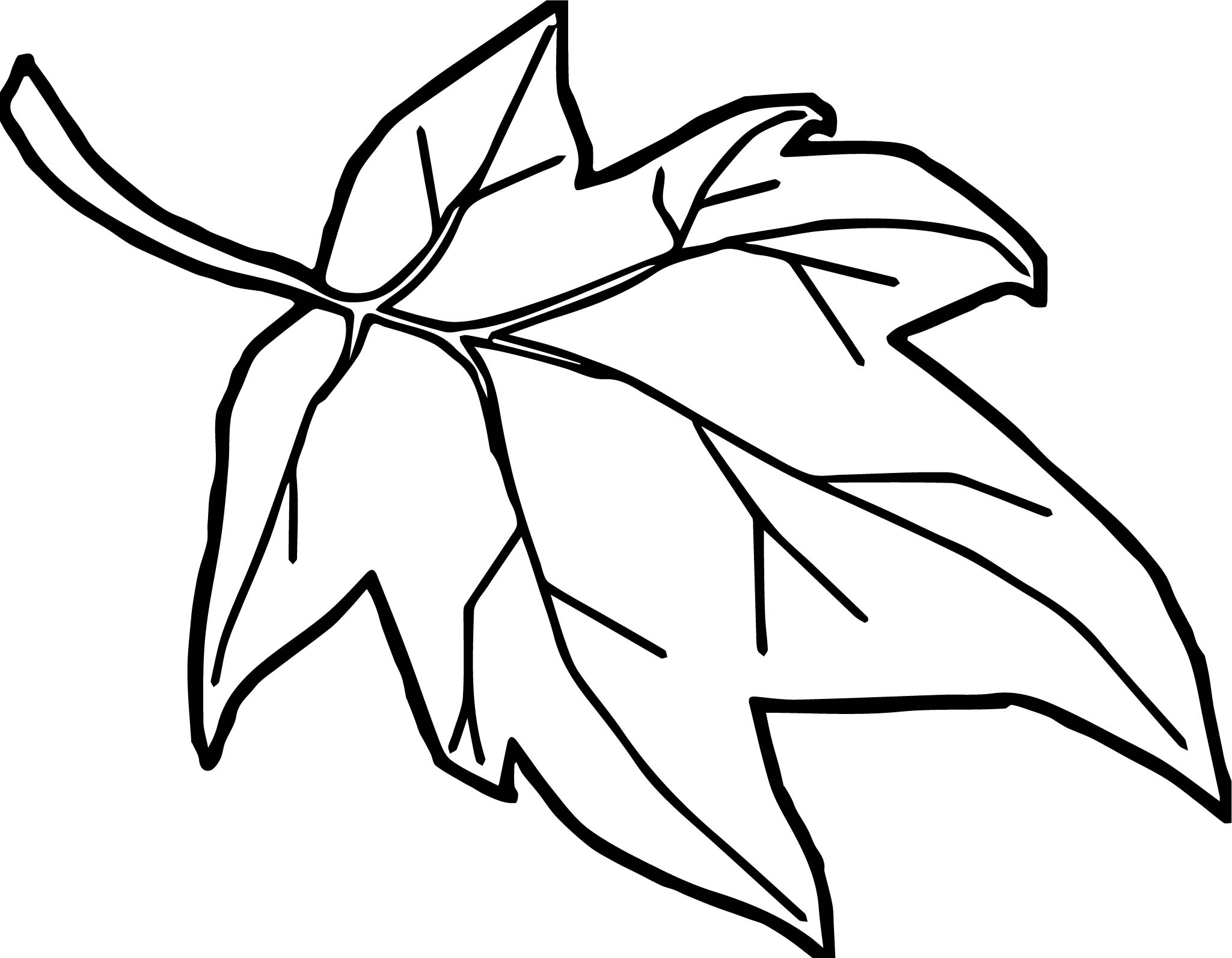 Coloring page autumn - Orange Autumn Leaf Coloring Page