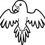 Parrot Up Coloring Page