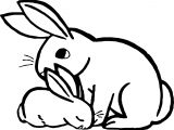 Rabbit Animal Coloring Page