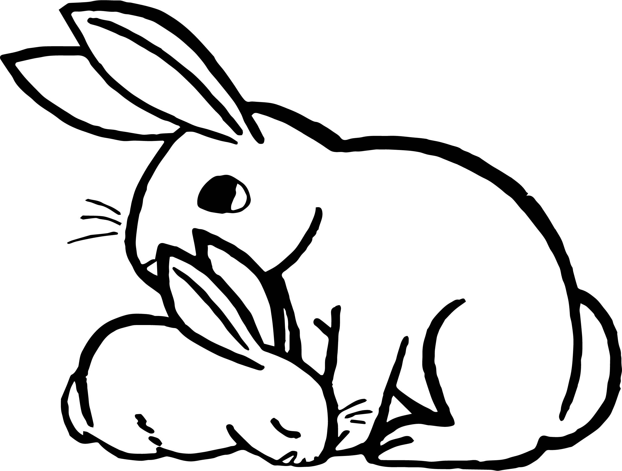 Rabbit Animal Coloring Page