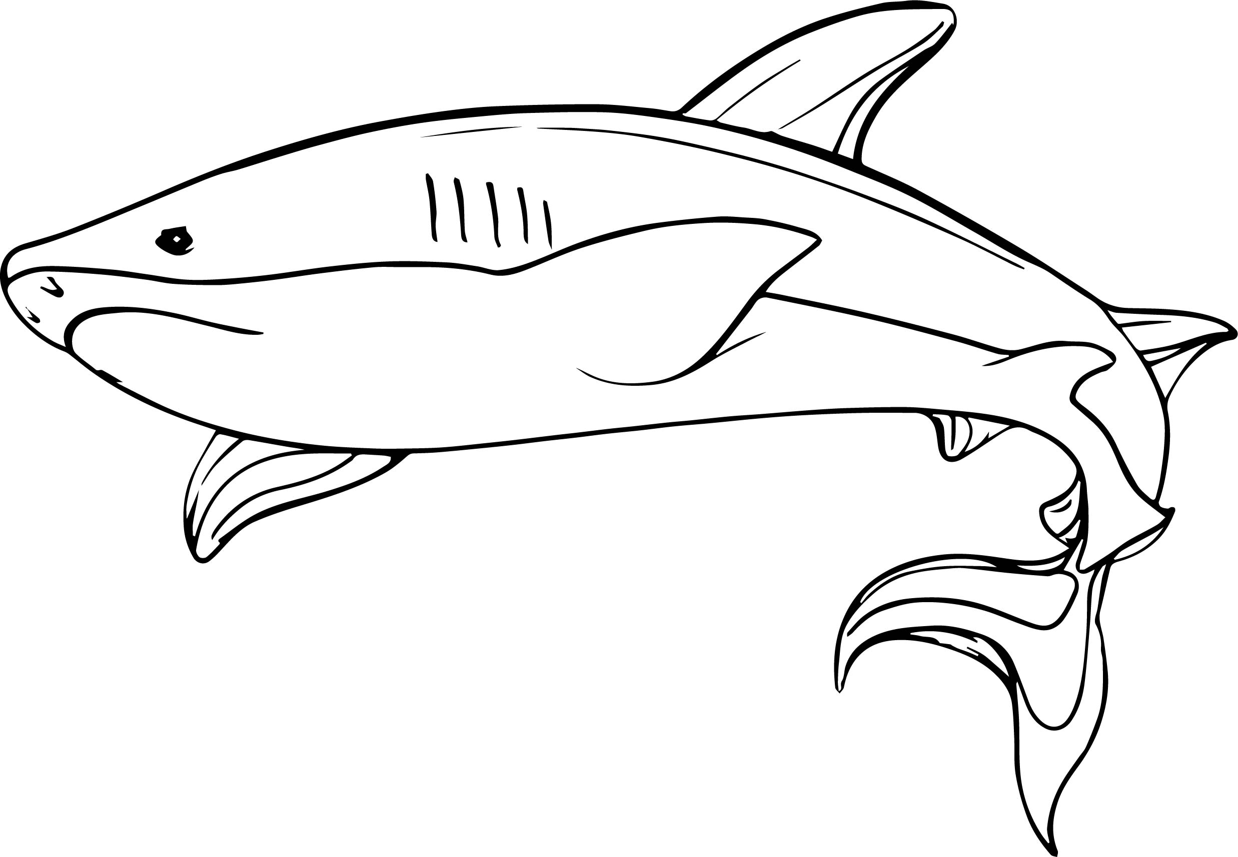 Underwater shark coloring page for Coloring pages shark