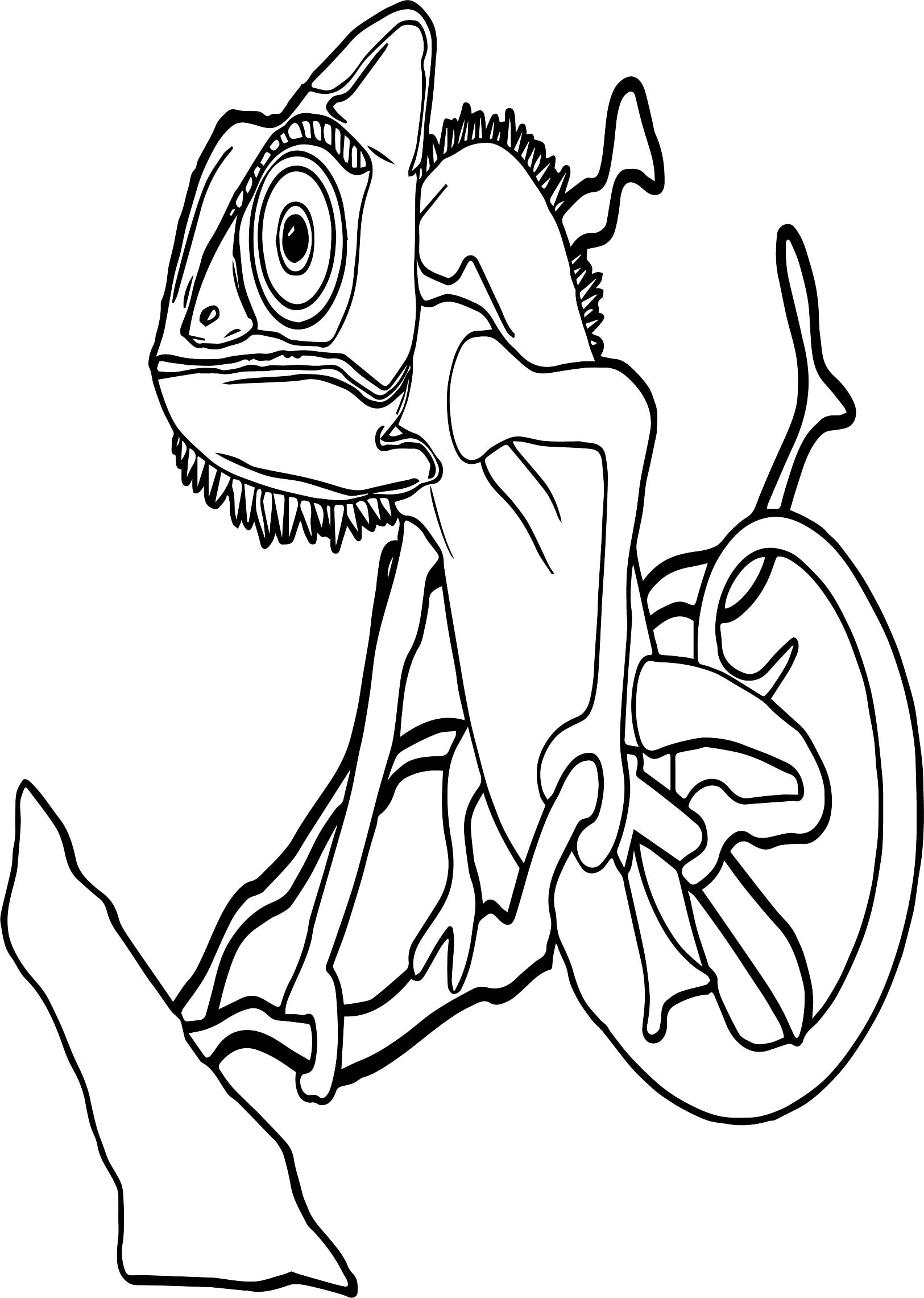 Amazon Animal Coloring Page
