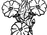 Calla Flower Wedding Coloring Page