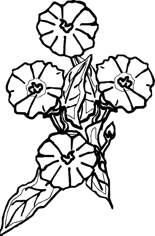 Calla Flower Wedding Coloring Page