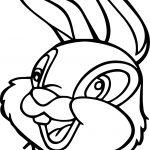 Disney Bambi Thumber Bunny Bunny Face Cartoon Coloring Page