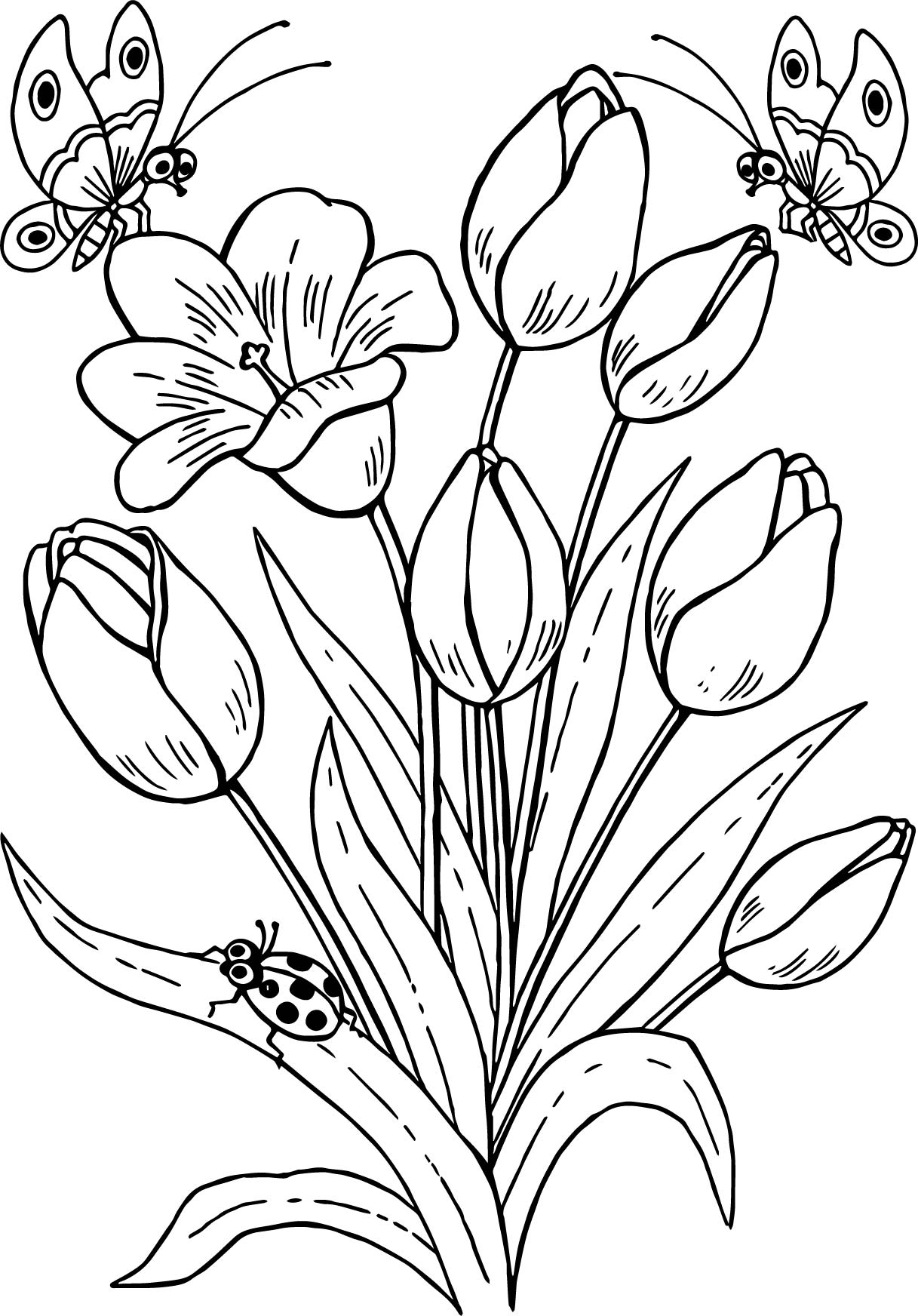 Drawing Butterfly Flowers Tulips Coloring Page