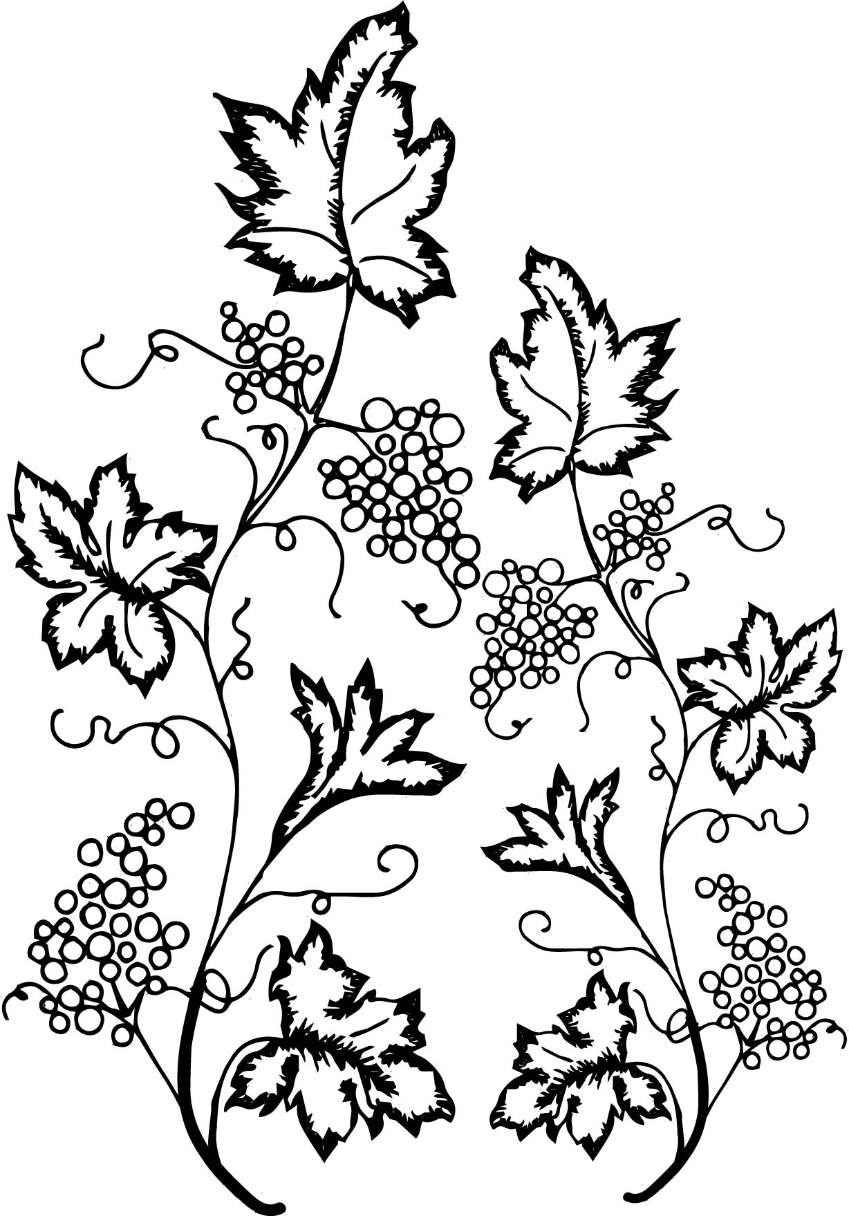 Grape Leaf Ivy Coloring Page | Wecoloringpage
