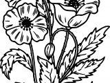 Noel Flower Coloring Page