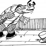Old Tortoise Turtle Coloring Page