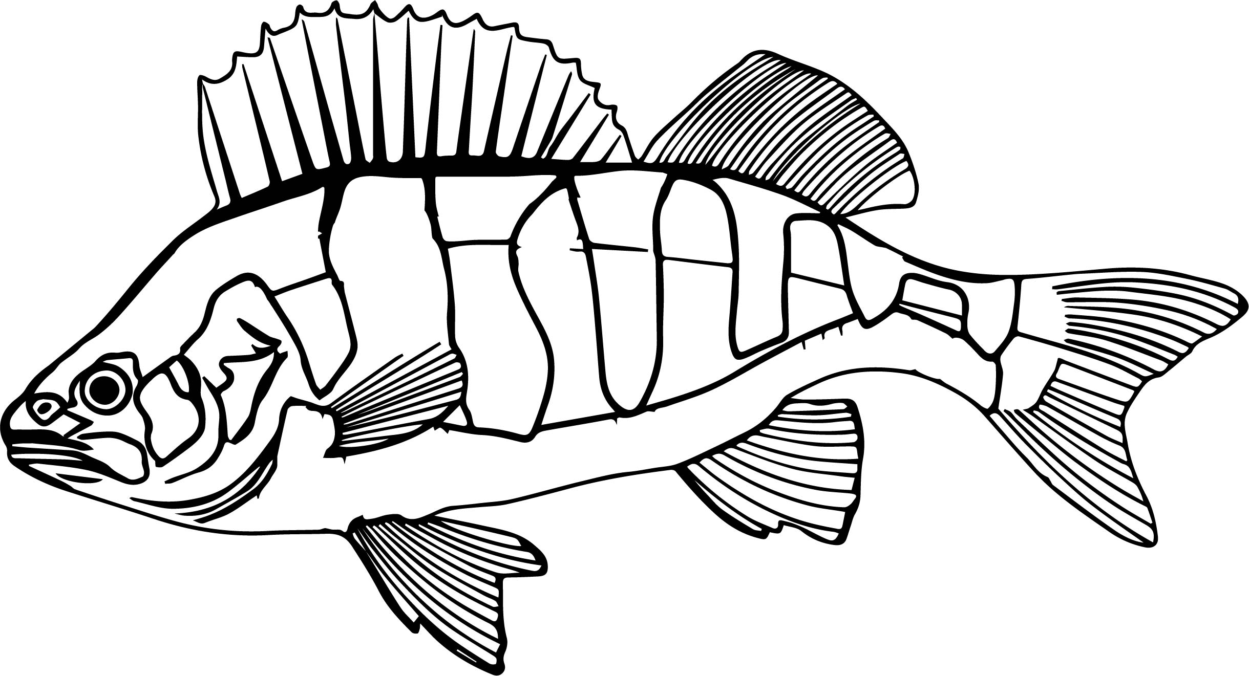 perch fish underwater submarine coloring page wecoloringpage