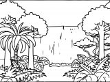 Rainforest Pictures Graphics Scene Coloring Page