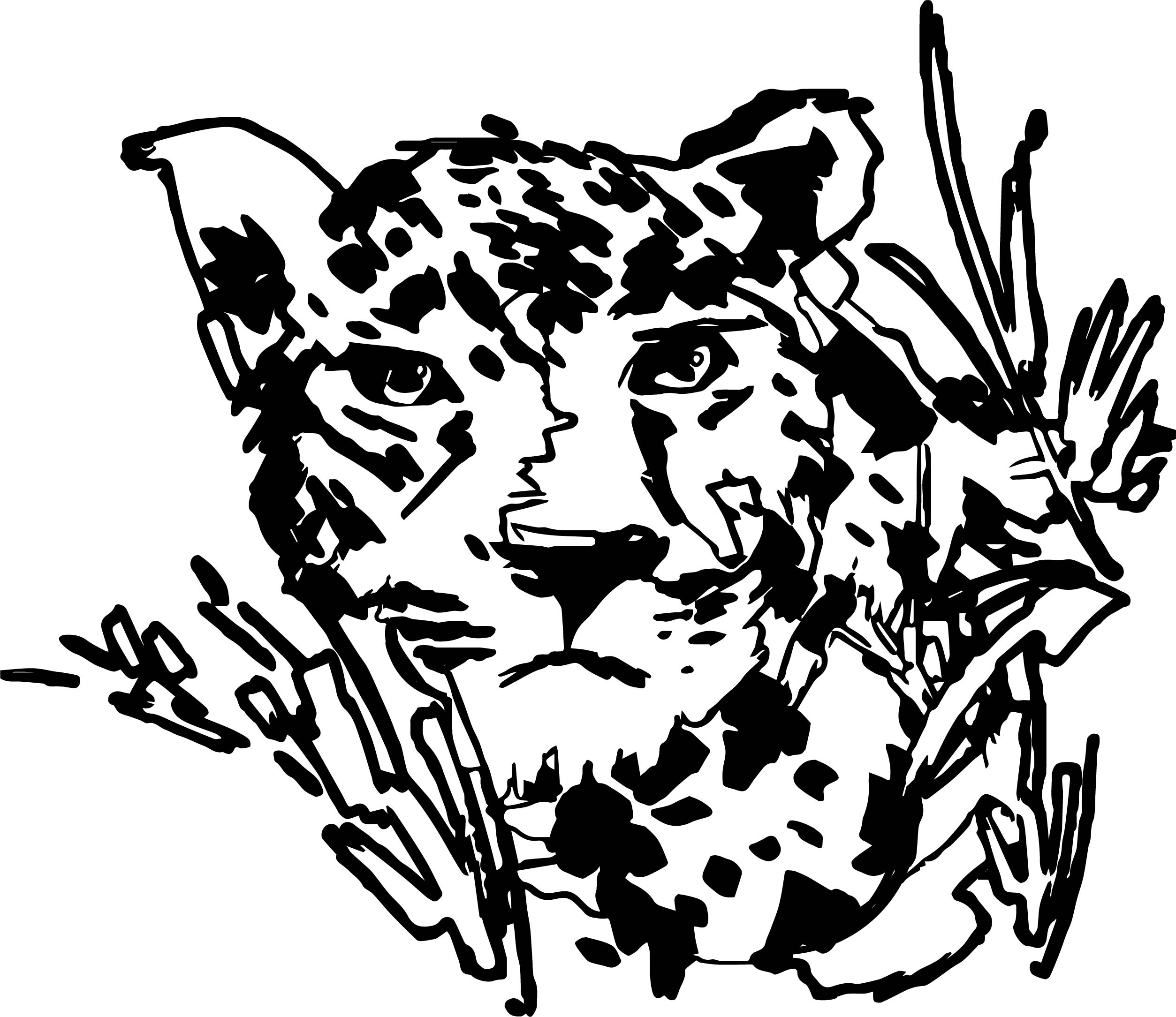Rainforest Tiger Coloring Page