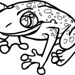 Salmonella Frog Coloring Page