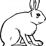 Side Rabbit Coloring Page