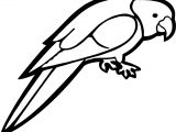 Talk Parrot Coloring Page