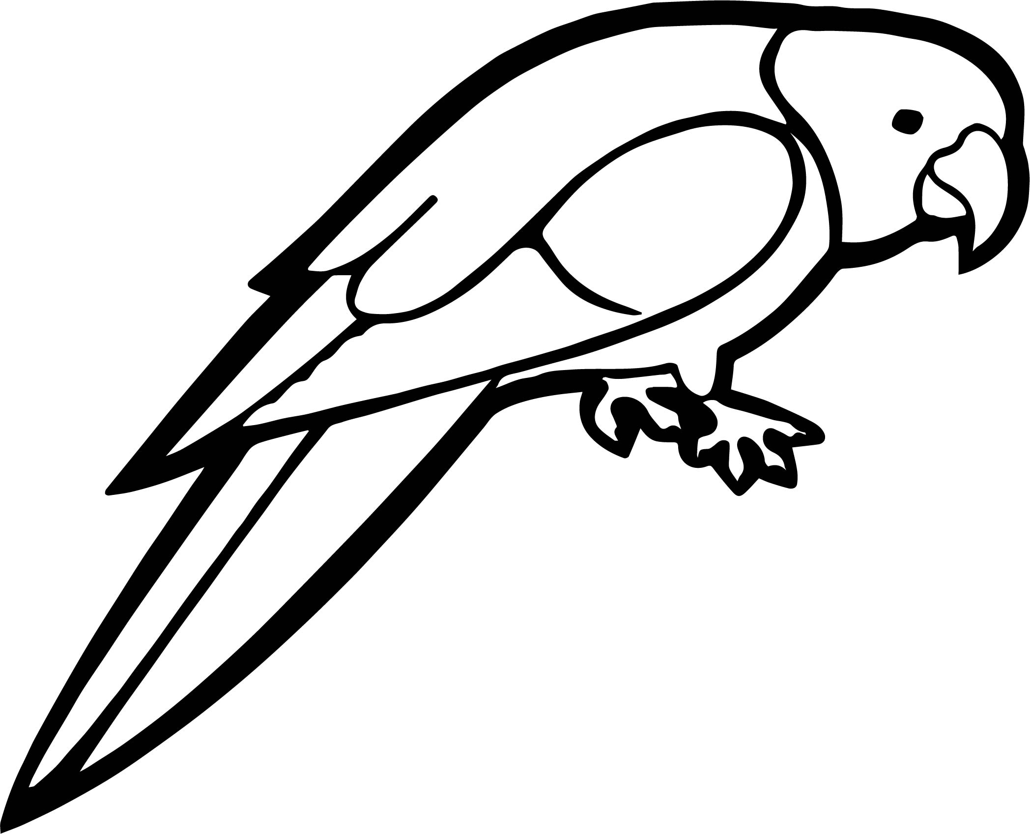 Talk parrot coloring page for Coloring pages parrot