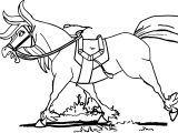 Trenk The Little Knight Horse Coloring Page